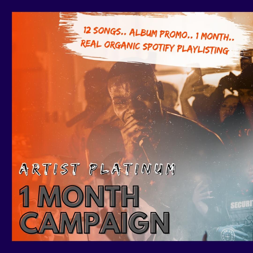 Artist-Platinum-Cover
